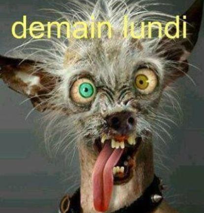 Humour comique - septembre 2013 - Humour photos, image drole et video insolite, blagues humour noir
